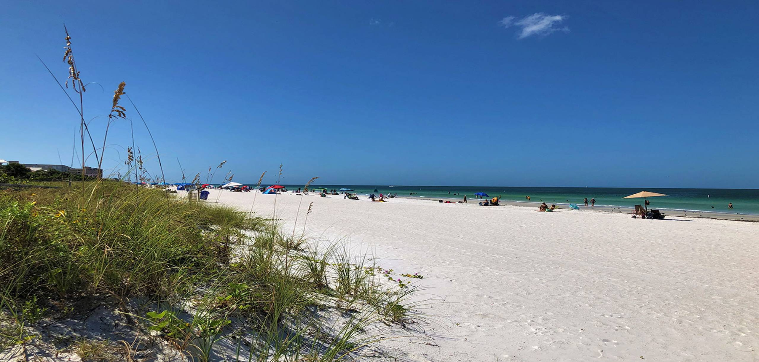 Sand Dunes at Beach | Long Key Vacation Rentals