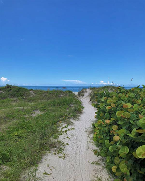 Path towards Beach | Long Key Vacation Rentals